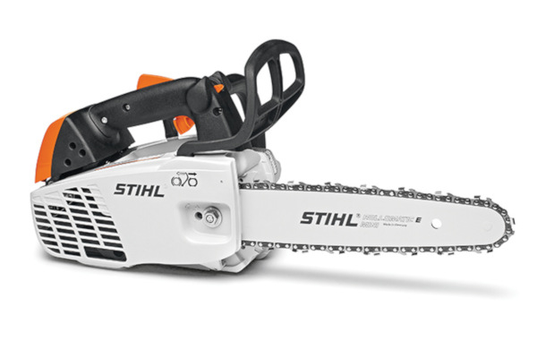 Stihl | In-Tree Saws | Model MS 194 T for sale at Rippeon Equipment Co., Maryland