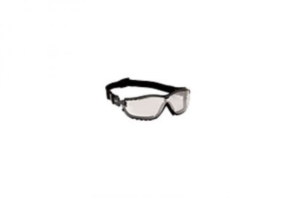 Echo | Glasses and Gloves | Model Part Number: 102922458 for sale at Rippeon Equipment Co., Maryland